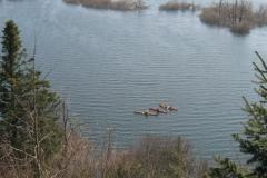 Pogled na zivahno dogajanje na jezeru