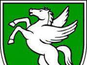 Rogaška Slatina - grb