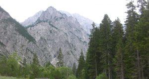 Tamar - Triglavski narodni park